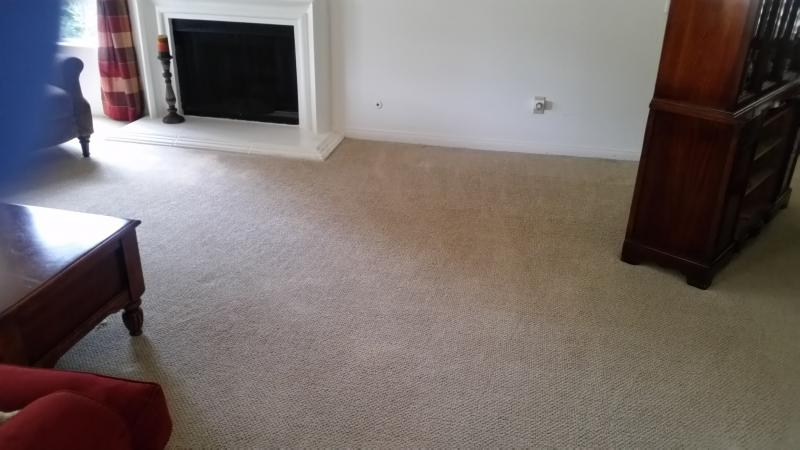 Allan Power Clean Carpet Cleaning Cleaning Specials